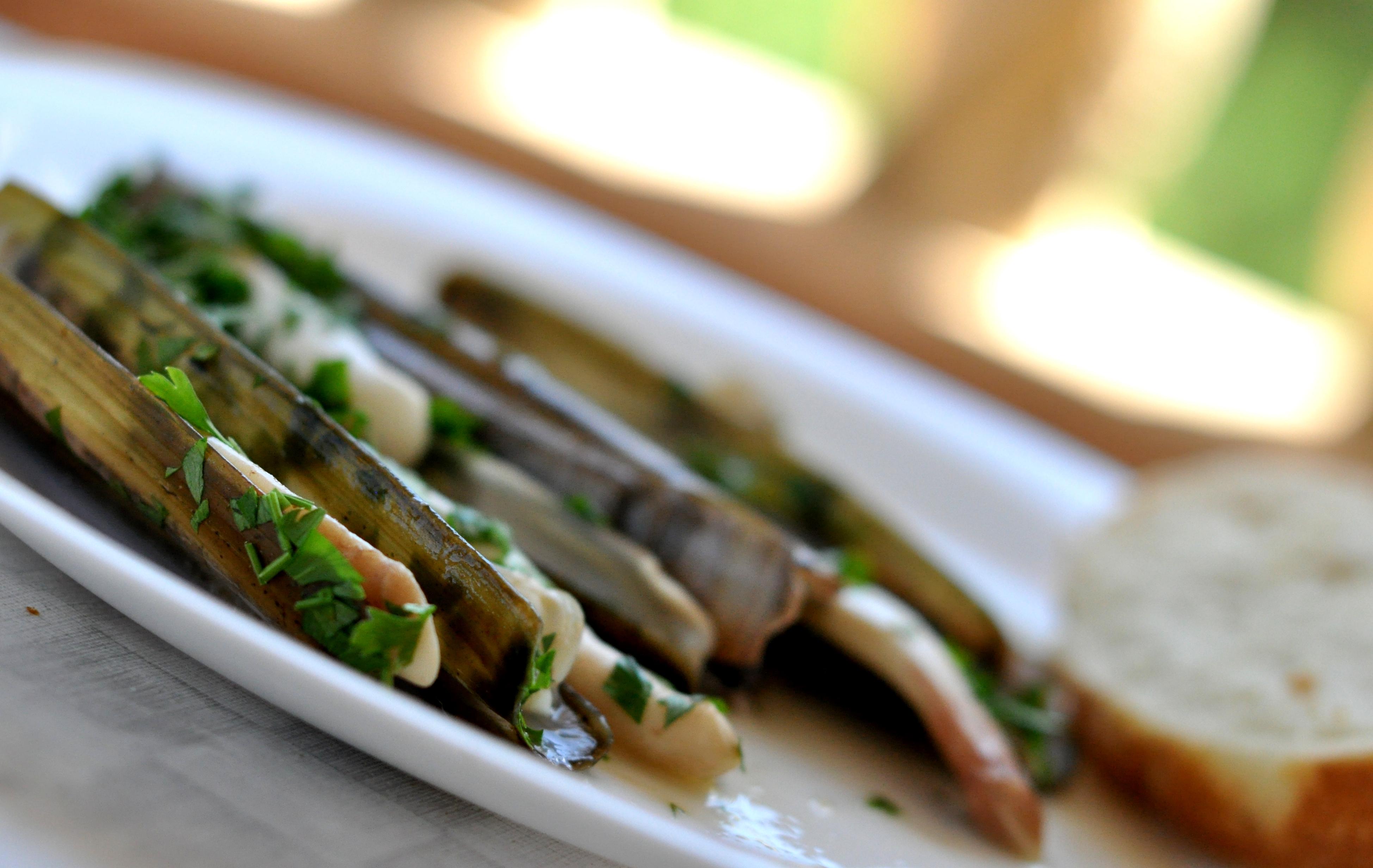 Couteaux de mer / razor clams